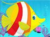 大鱼吃小鱼积分版