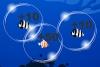深海泡泡捕鱼