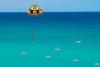 捕鱼挖矿打海盗
