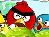 愤怒的小鸟大碰撞