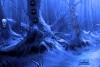 逃离万圣节闹鬼的森林