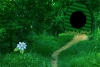 逃离绿树林