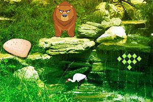 野生动物园逃离