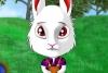 有趣的兔子